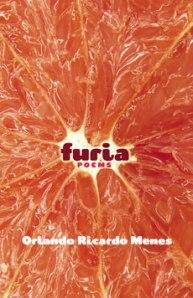 furia1